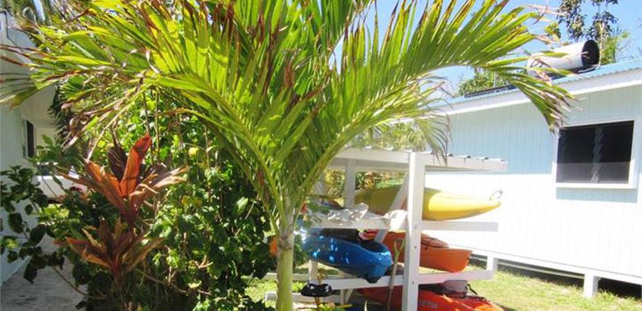 Kayaks and garden