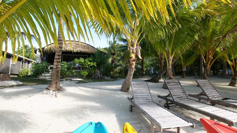 Aretai Beach Kayaks